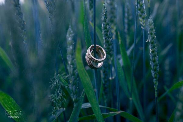 Vestuviniai žiedai - pinta kasa